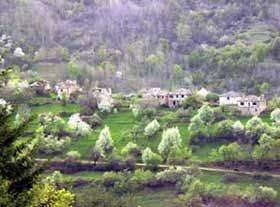 Village of Dyadovtsi, Ardino